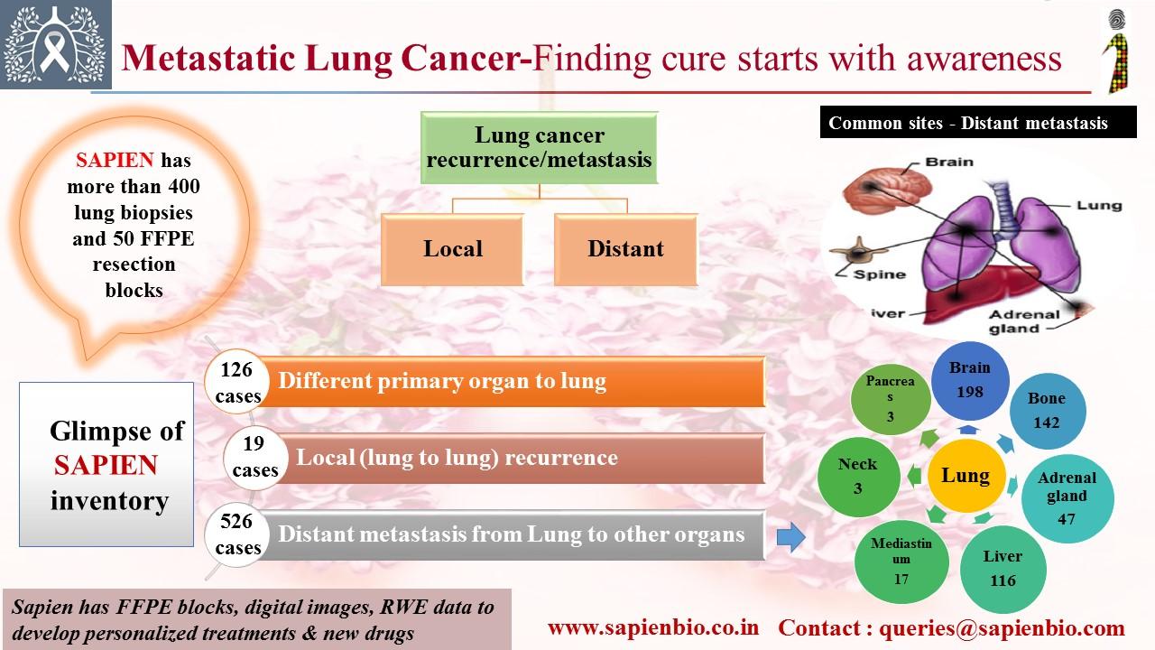 cancer colorectal viande medicamente cu vierme mai puțin toxice